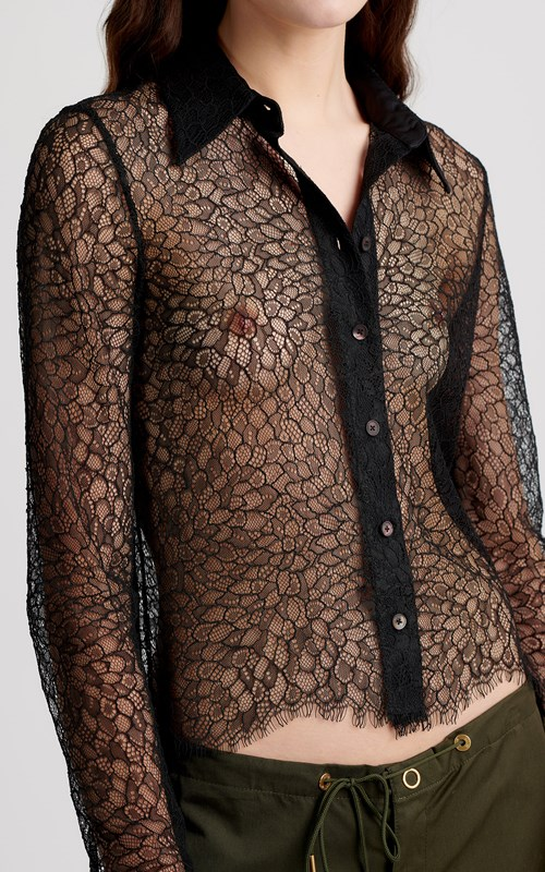 New  | LACE FITTED SHIRT