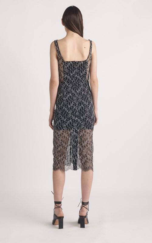 Dresses | VEIN LACE CORSET DRESS