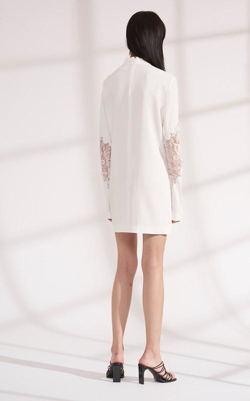 Dresses | LACE APPLIQUE MINI LONG SLEEVE DRESS