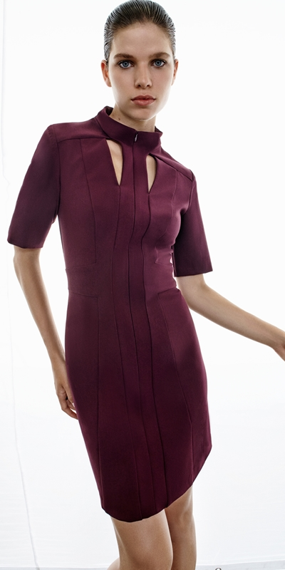 Dresses  | Plum Cut Out Mini Dress